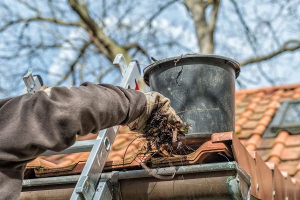 Gutter Cleaning in Galvin, WA